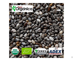 Chia Organic And Conventional