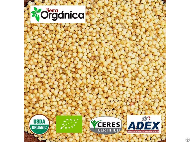 Amaranth Organic And Conventional