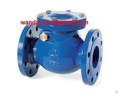 Cast Iron Swing Check Valve Din Pn16