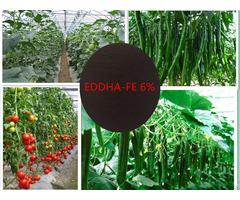 Eddha Fe 6% Chelated Iron
