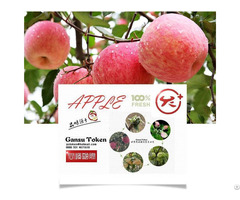 Fresh Apple Fuji Huaniu Red Dicious