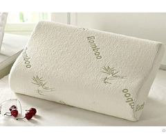 Contour Memory Foam Pillow With Bamboo Cover