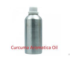 Curcuma Aromatica Essential Oil