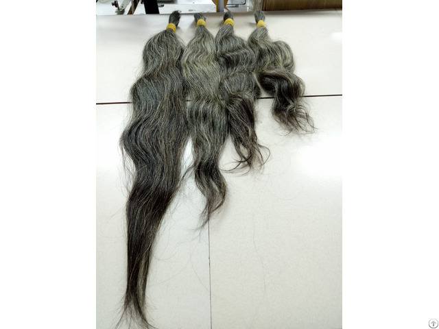 Gray Human Hair From Old Women