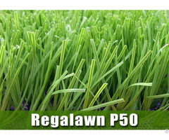 Football Grass Regalawn P50