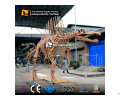 Jurassic Dinosaur World Attraction Spinosaurus Skeleton Model