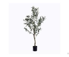 Silk Single Trunk Olive Tree