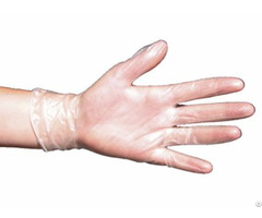 Vinyl Gloves Disposable