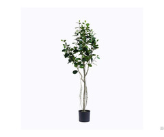 Plastic Ficus Microcarpa Tree