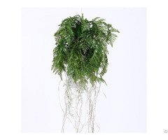 Plastic Hanging Fern Plants