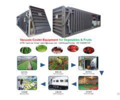 Vacuum Cooler Machine For Leafy Vegetables And Fruits Flowers
