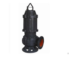 China Submersible Sewage Pump