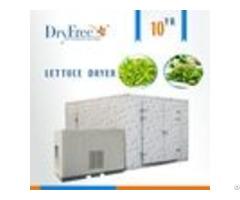 Hot Air Food Dryer
