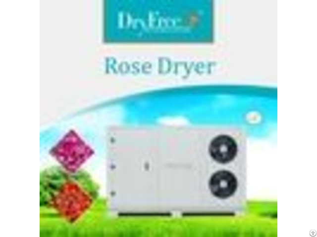 Energy Saving Rose Air Compressor Dryer