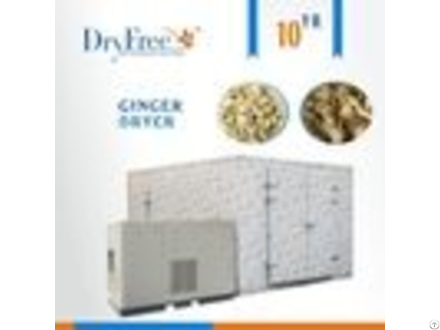 Industrial Food Dry Machine Vegetable Ginger Dehydration