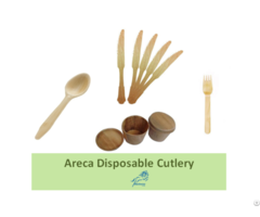 Eco Friendly Cutlery Disposable Biodegradable
