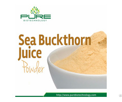 Natural Sea Buckthorn Berry Powder Extract