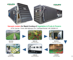 Vacuum Cooler For Fresh Vegetables Rapid Cooling