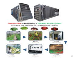 6pallet Vacuum Cooler For Lettuce Rapid Cooling After Harvest