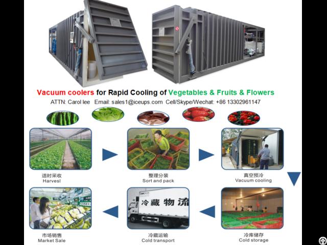 6pallet Vacuum Cooler For Lettuce Mushroom Leek Cooling