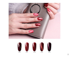 New Arrival Uv Gel Soak Off Nail Polish Oem Cat Eyes