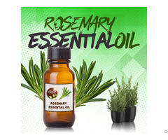 Rosemary Essential Oil 100% Natural Pure
