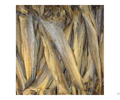 Dried Stockfish