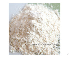 Manufacture High Quality Organic Garlic Powder Dehydrated Vegetables