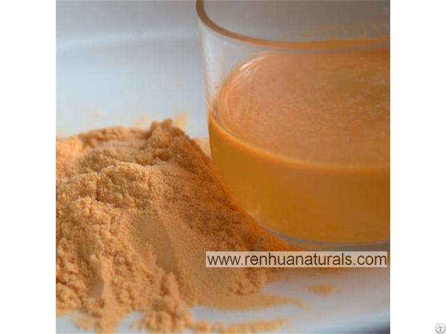 Natural Fruits Additives Goji Berry Juice Powder