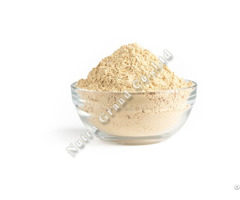 Jackfruit Powder Freeze Dried Thailand
