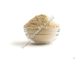 Mango Powder Freeze Dried Thailand