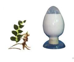 100%natural Resveratrol Polygonum Cuspidatum Extract Powder