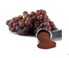 100%natural Anti Oxidant Grape Seed Extract