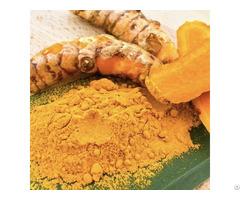 Pure Natural Turmeric Root Extract Powder 95% 98% Curcumin