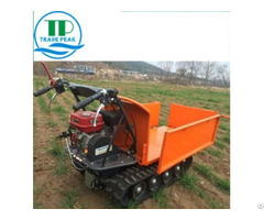 Good Quality Hydraulic Pump Mini Dumper Qtp500n With Fair Price From China