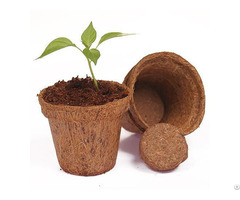 Coir Pots Small Round