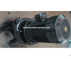 Lw Wl Vertical Sewage Pump For Waste Water