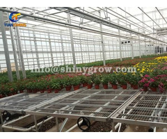 Greenhouse Rolling Benches Welded Wire Mesh Expanded Metal Bench Top