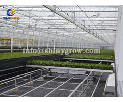 Shuttle Rolling Bench System Greenhouse Automation Solution