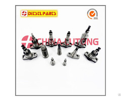 Injection Plunger 1418321039 1321 039 From China Best Factory