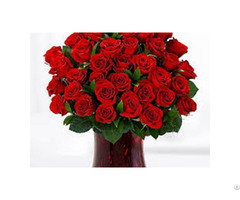 Best Fresh Flowers Seller's