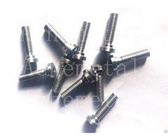 Deep Processing High Density Good Temperature Resistance Tungsten Screws Vacuum Packaged