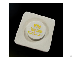 Customized Superior Quality Gold Stamping Vacuum Formed Ps Plastic Flocking Tray