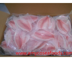 Frzoen Tilapia Fillet At Low Price