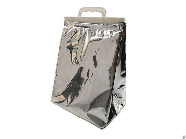 Aluminium Foil Isothermal Cooler Bag For Frozen Food