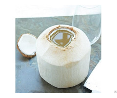 Fresh Young Coconut Natural