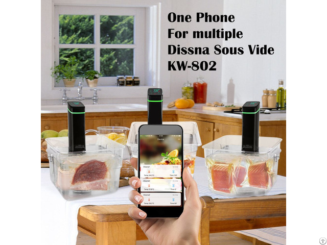 Factory Newest Sous Vide With Waterproof And Wifi