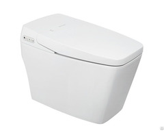 Intelligent Integrated Electronic Toilet Bowl