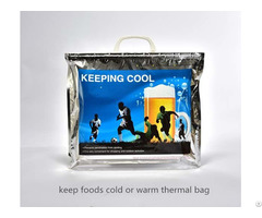 Keep Foods Cold Or Warm Thermal Bag