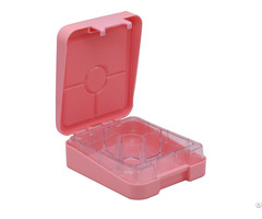 Kids School Sections Lunch Box